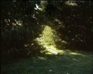 "Montlake Opening, 2009, archival pigment print, 16"" x 20"""