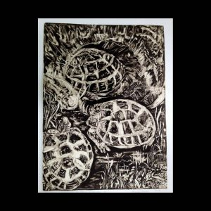 Russian Tortoise, monotype, 2013