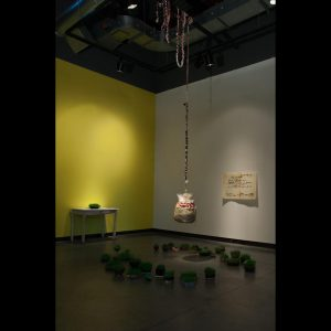Up and Down, installation view, 2016 live grass in kitchen containers, dryer lint, rubber, rice paper, fabric, mixed media 14' x 14' x 20'
