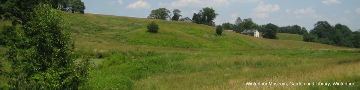 page-banner-winterthur-grass-field